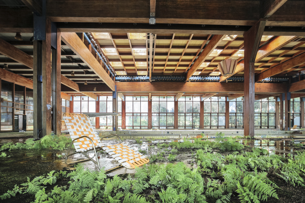 """Ferns prosper from a moss-caked poolside at Grossinger's Catskills Resort in Liberty, NY. The hotel was popular among well-heeled Jewish New Yorkers in the 50s and 60s and served as the inspiration for """"Dirty Dancing."""""""
