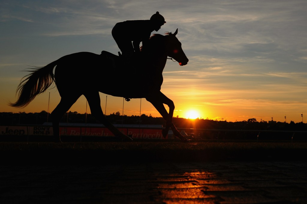 MELBOURNE, AUSTRALIA - OCTOBER 15: Michael Walker riding Criterion as the sun rises above the horizon during a trackwork session at Moonee Valley Racecourse on October 15, 2015 in Melbourne, Australia. (Photo by Vince Caligiuri/Getty Images)
