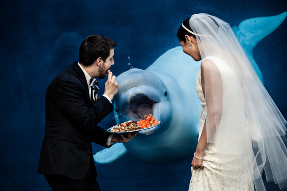 **MANDATORY PICTURE CREDIT** PIC BY: TONY FIORINI / ISPWP / CATERS NEWS (Pictured: Beluga whale photobombs newlywed couple) - These hilarious photos will leave people WEDDING themselves with laughter. The images - which include photobombs, wardrobe malfunctions and unexpected animal behaviour - have been released by the International Society of Professional Wedding Photographs (ISPWP). Each year the society holds quarterly competitions, celebrating a variety of the best image from couples special days. Other categories in the ISPWPs completions include the likes Getting Ready, First Dance, Family Love, and a selection of portrait possibilities. - SEE CATERS COPY (FOTO: DUKAS/CATERSNEWS) *** Local Caption *** Funniest Wedding Photos of 2015