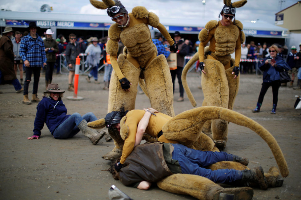 """One of several men dressed as a kangaroo is tackled by a drunk man at the Deni Ute Muster in Deniliquin, New South Wales, Australia, September 30, 2016. REUTERS/Jason Reed SEARCH """"UTE CULTURE"""" FOR THIS STORY. SEARCH """"THE WIDER IMAGE"""" FOR ALL STORIES."""